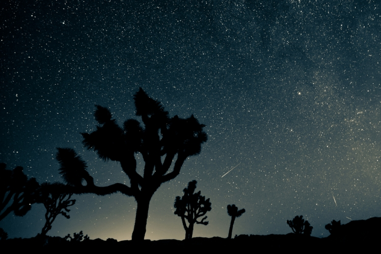 13 Best Places To Stargaze In The Us Lost Waldo