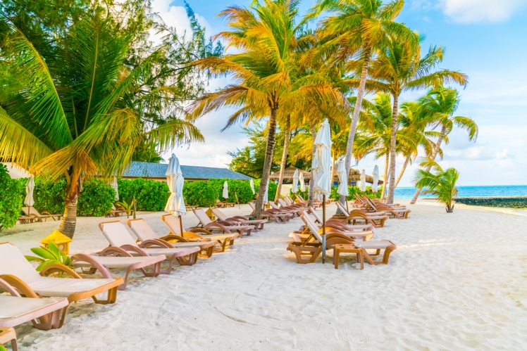 Discover the Best Caribbean Cruises for you