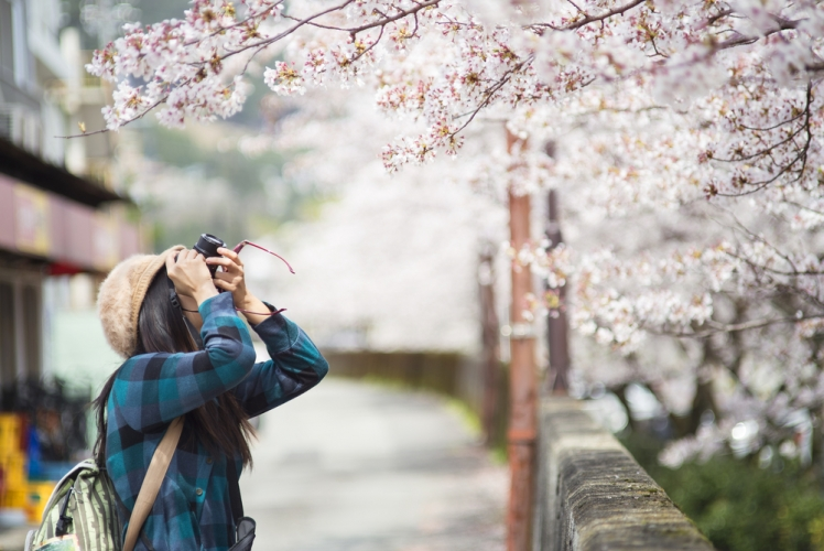 Which are the Best Japan Vacation Tours?