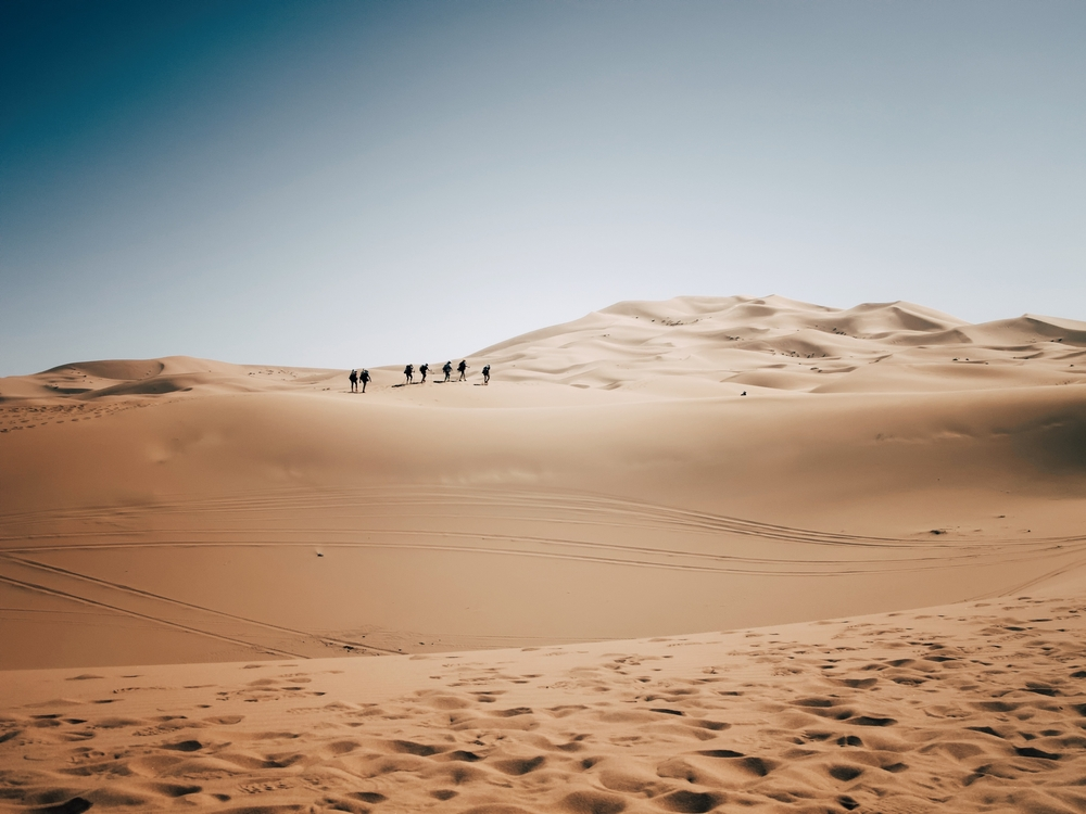 Run the Toughest Footrace, Morocco