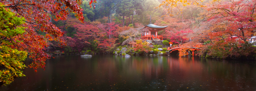 Wild Scenery, Welcoming Culture | Ultimate 10 Tours To Take In Japan
