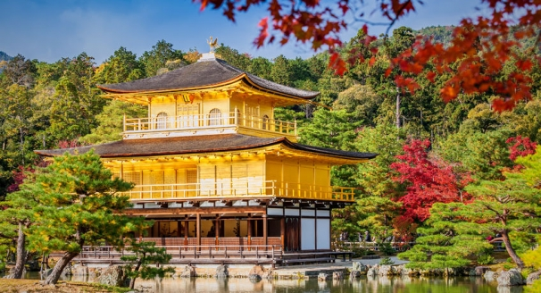 The 10 Best Places to Visit on Your Tour of Japan