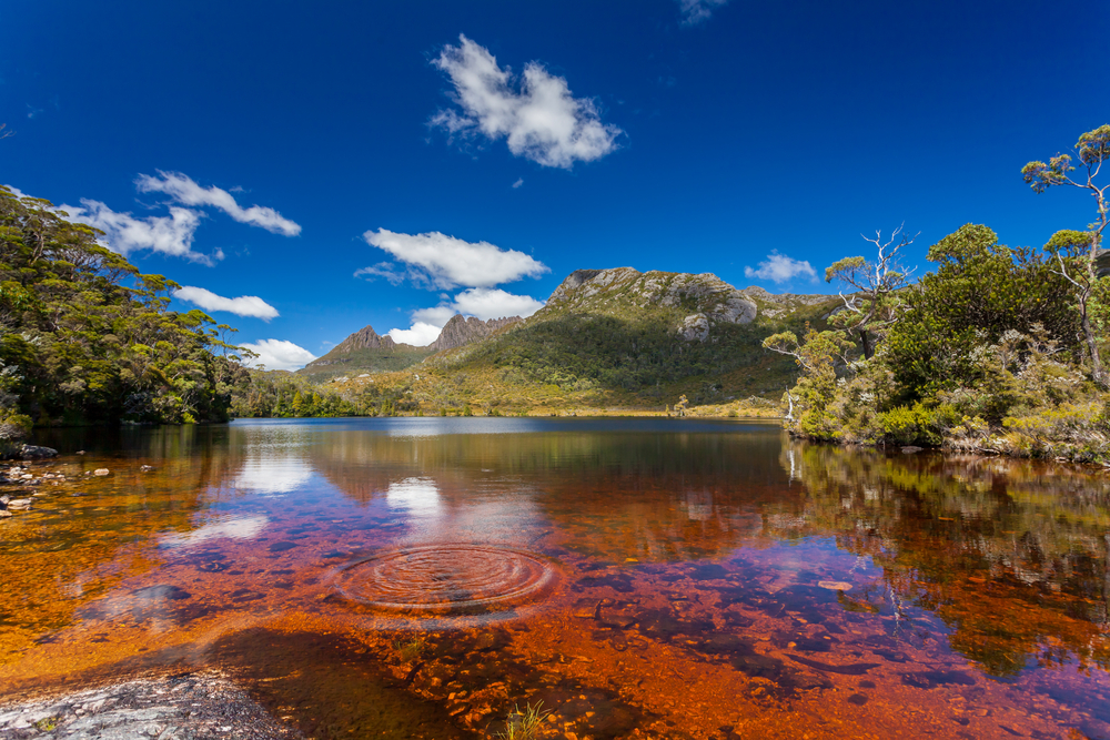 Climb to the top of Cradle Mountain